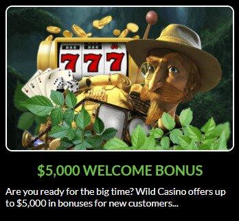 wild casino bonus promotion