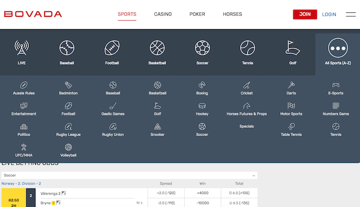 Bovada's full list of sports betting options