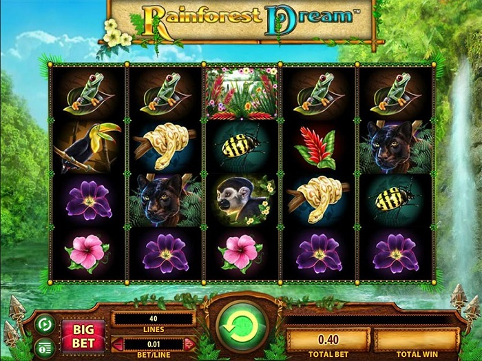 Rainforest Dreams Slots