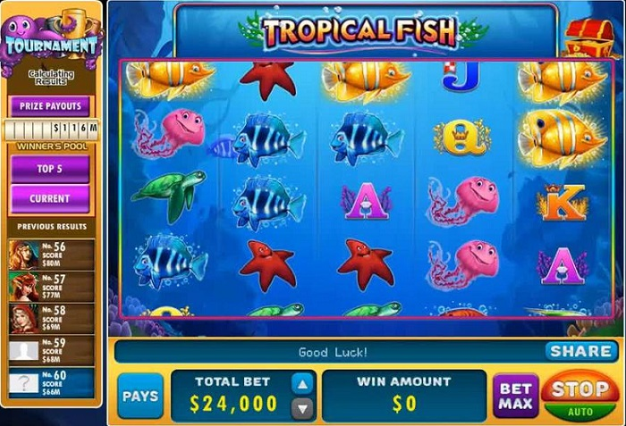 Tropical Fish Online Slot