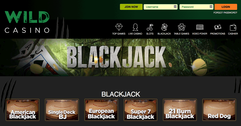 wild casino mobile blackjack