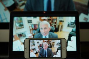 dr fauci during white house teleconference