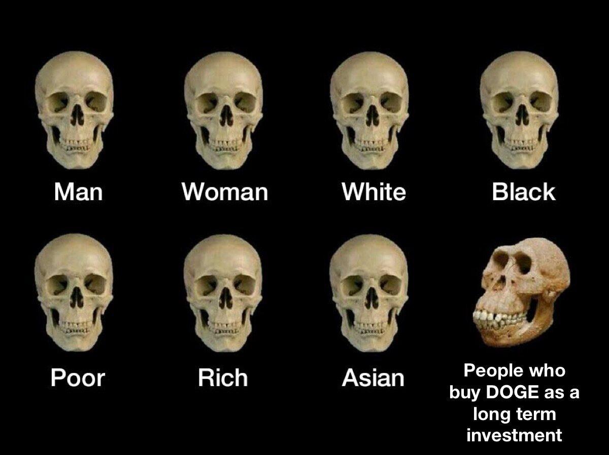 human skull types dogecoin meme