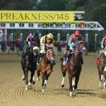 Horses run at the Preakness Stakes