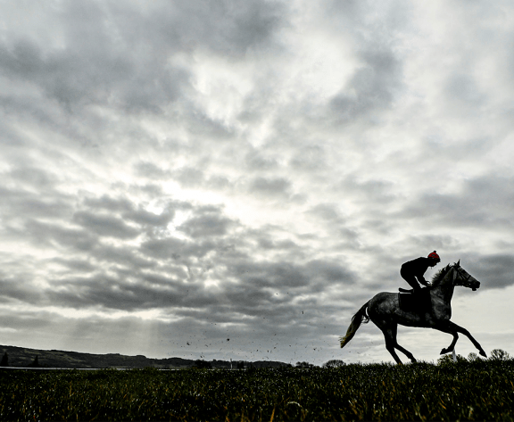 Cheltenham Gold Cup Betting Preview – How to Bet and Live Stream in US