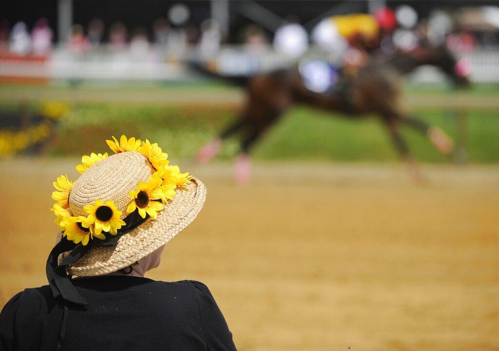 Black-Eyed Susan Flower Hat