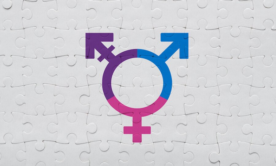 gender neutral puzzle, pink blue and purple gender rings connected