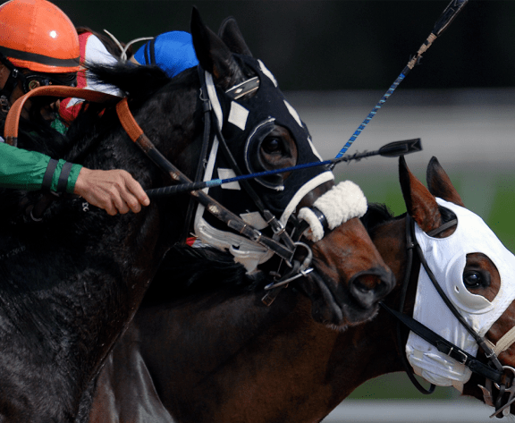 2021 Kentucky Derby Betting Tips: Top Picks And Outside Bets