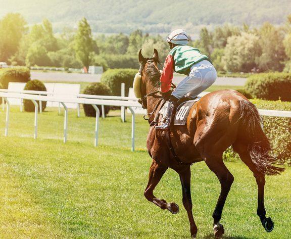 Kentucky Derby 2021: Horse Racing Tips, Bet Types, Start Time & Odds