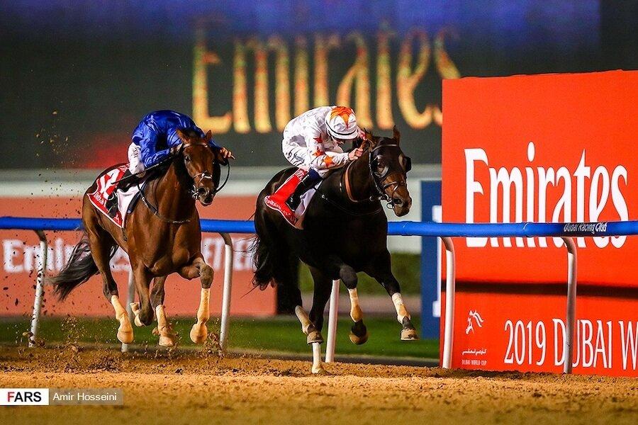 horses racing during dubai world cup horse race